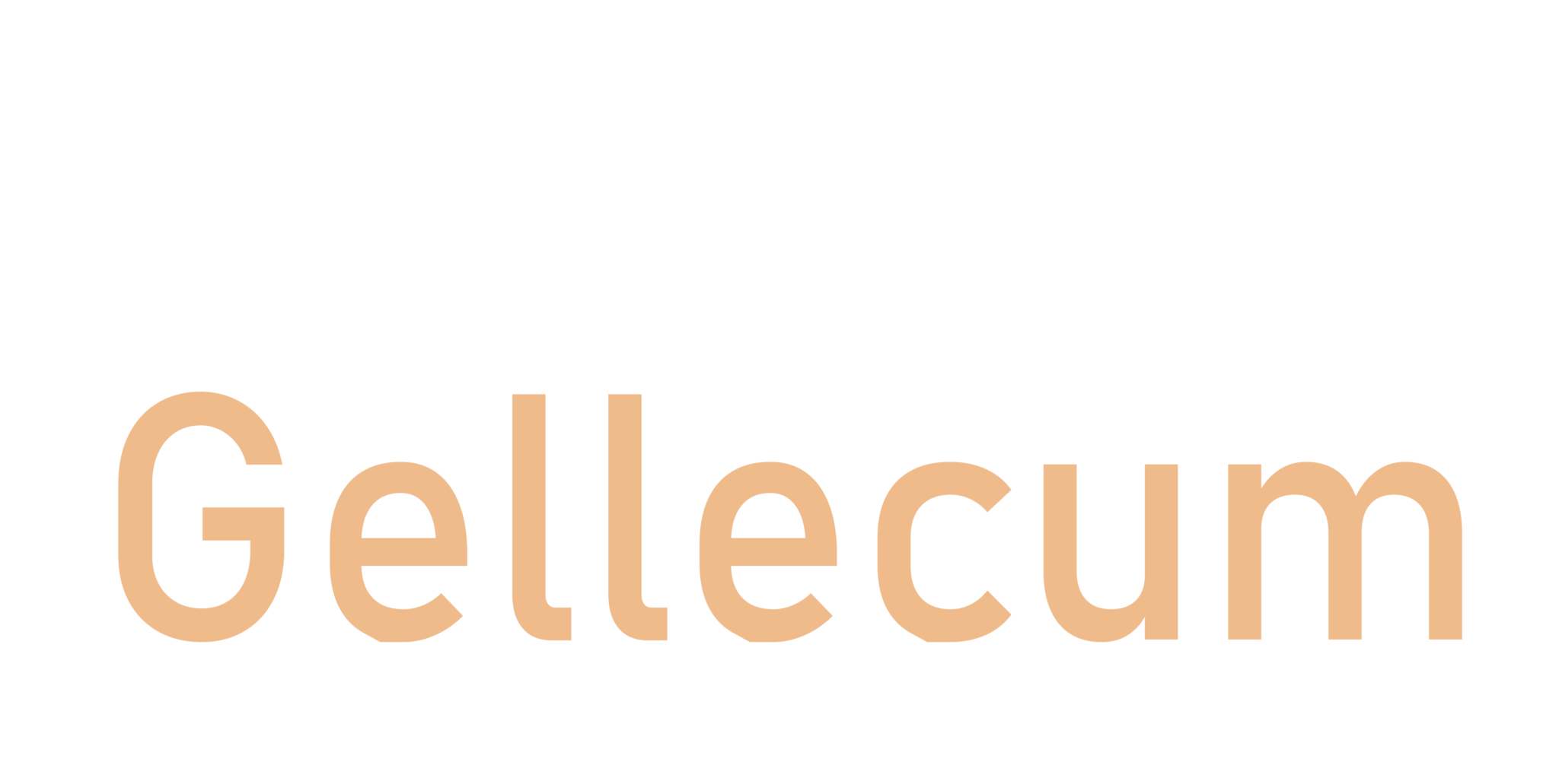 Jason v Gellecum – DJ & Host
